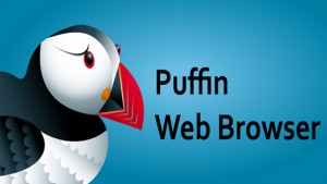 Puffin Browser Pro v4.7.0.2347 Apk